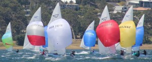 FFs in 2014 at LMYC - with Spinakers